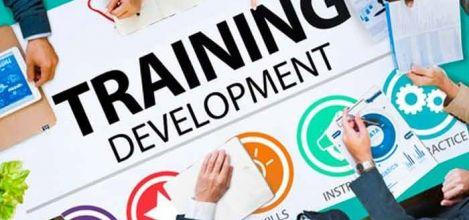 Jobs, Training, and Skills Development Resources