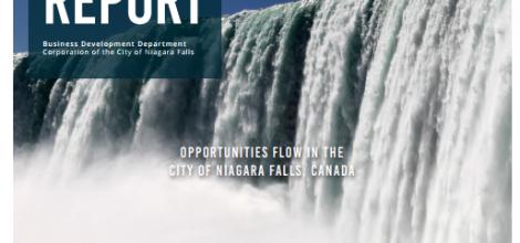 Niagara Falls Business Development Highlights 2020