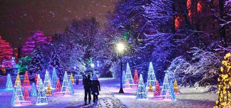 Winter Festival of Lights to Brighten 2020